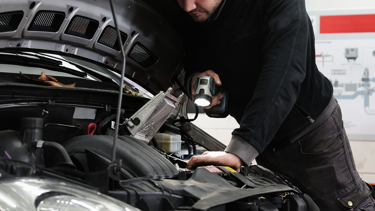 Routine car maintenance: What it includes and how to do it